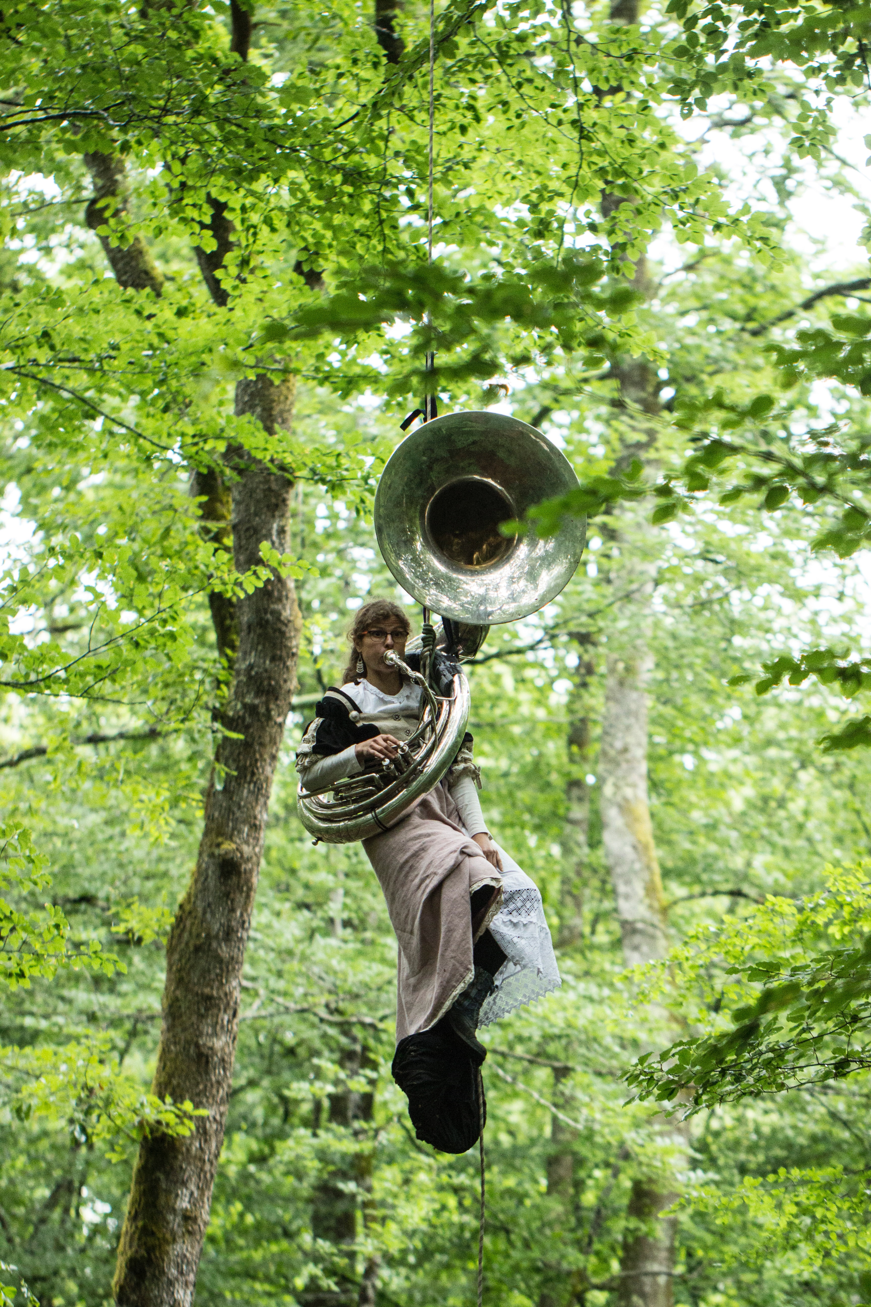 Picture of a lady blowing a massive horn in a tree