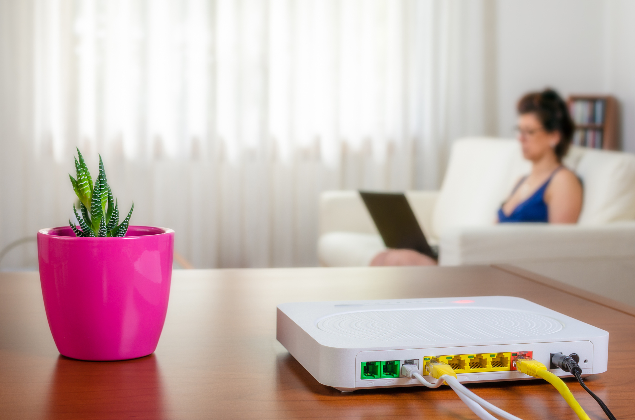 Picture of a router and a plant