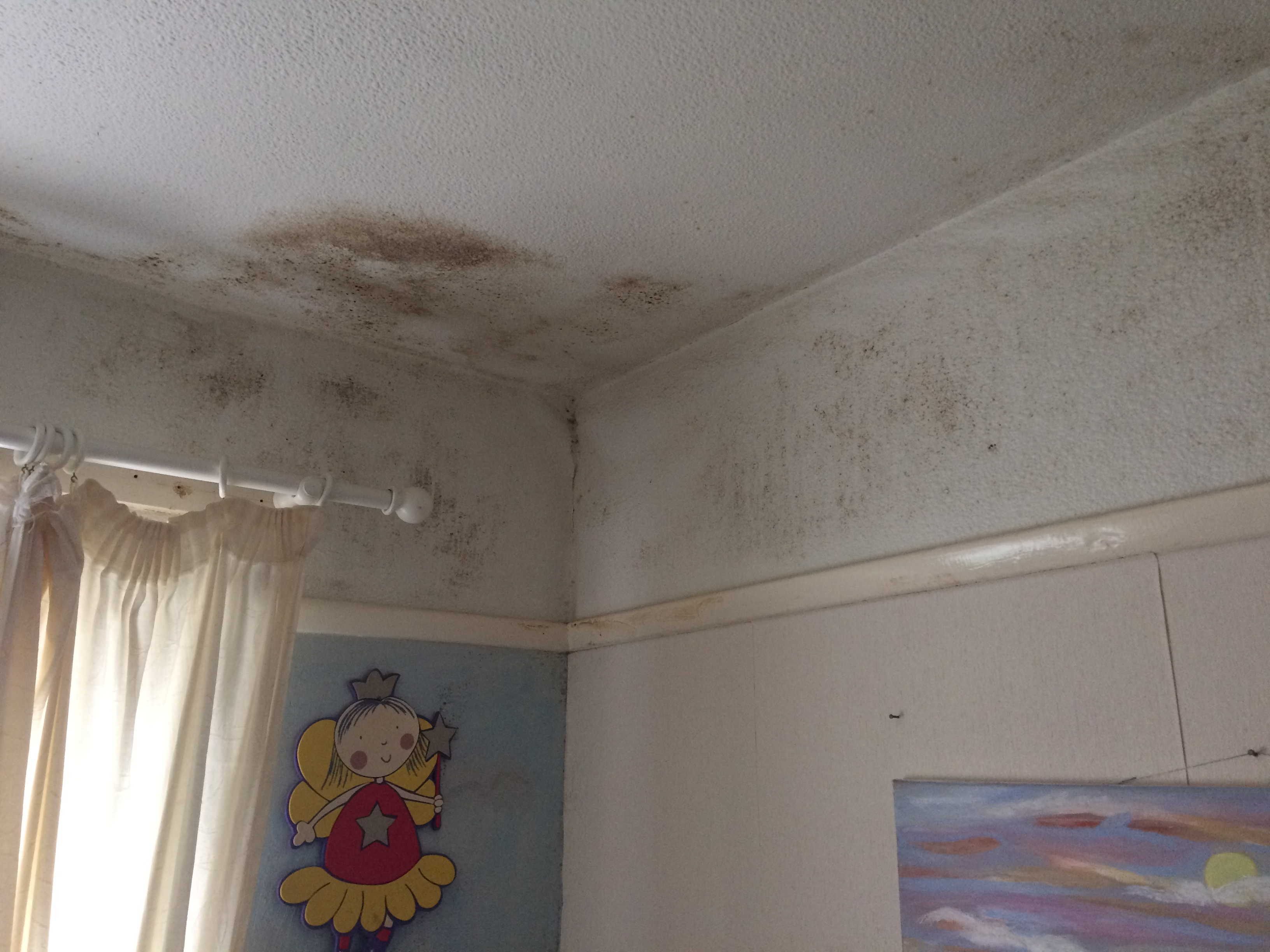 Picture of damp on the walls of a childs bedroom