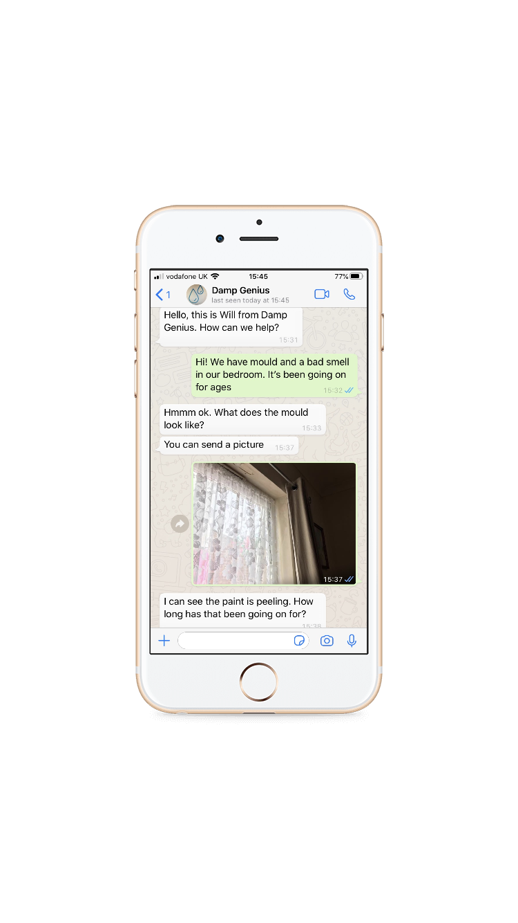 Screenshot of a WhatsApp conversation with Damp Genius